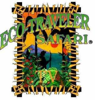 ECO-TRAVELER SAFARI OF SARAWAK DVD/VHS